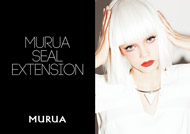 MURA SEAL EXTENSION